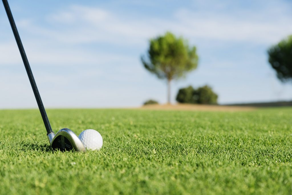 Golf club and ball in grass.